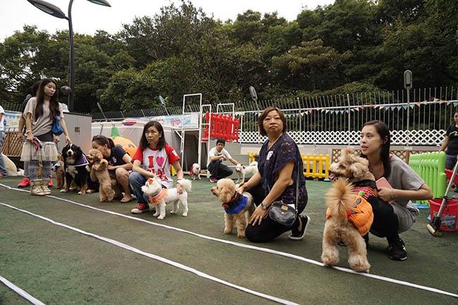 參賽狗狗需於限時內做出指定動作,完成最多指令的狗狗將成為賽事冠軍,並會獲得豐富獎品!