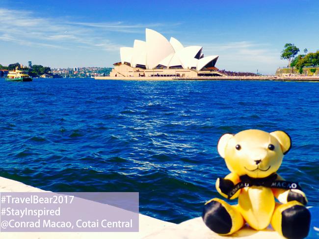 Conrad Bear sitting by Sydney Opera House