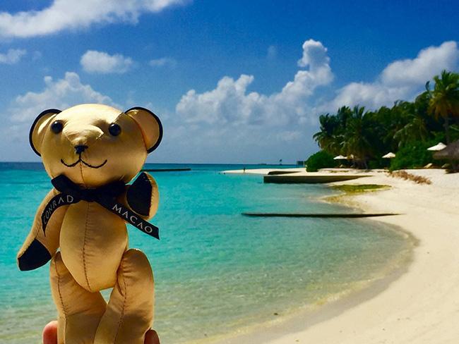 Conrad Bear visit Maldives
