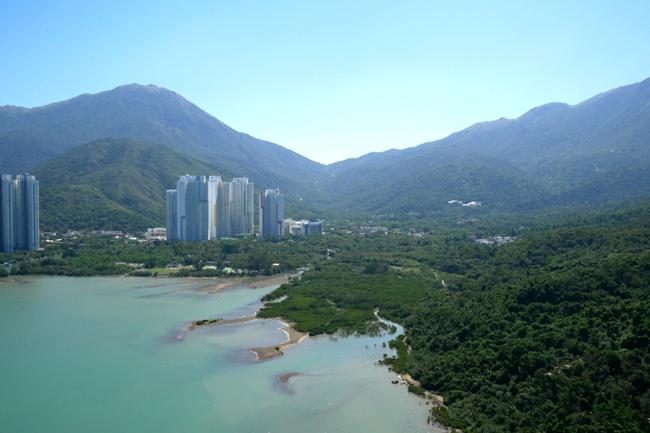 TC River Estuary