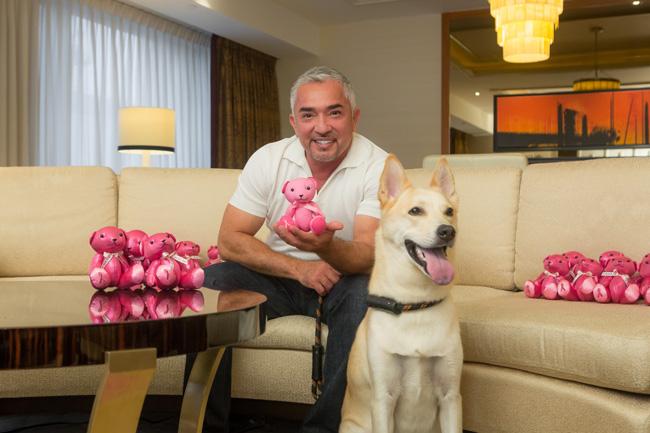 World-renowned dog trainer Cesar Millan
