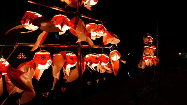 fish 01